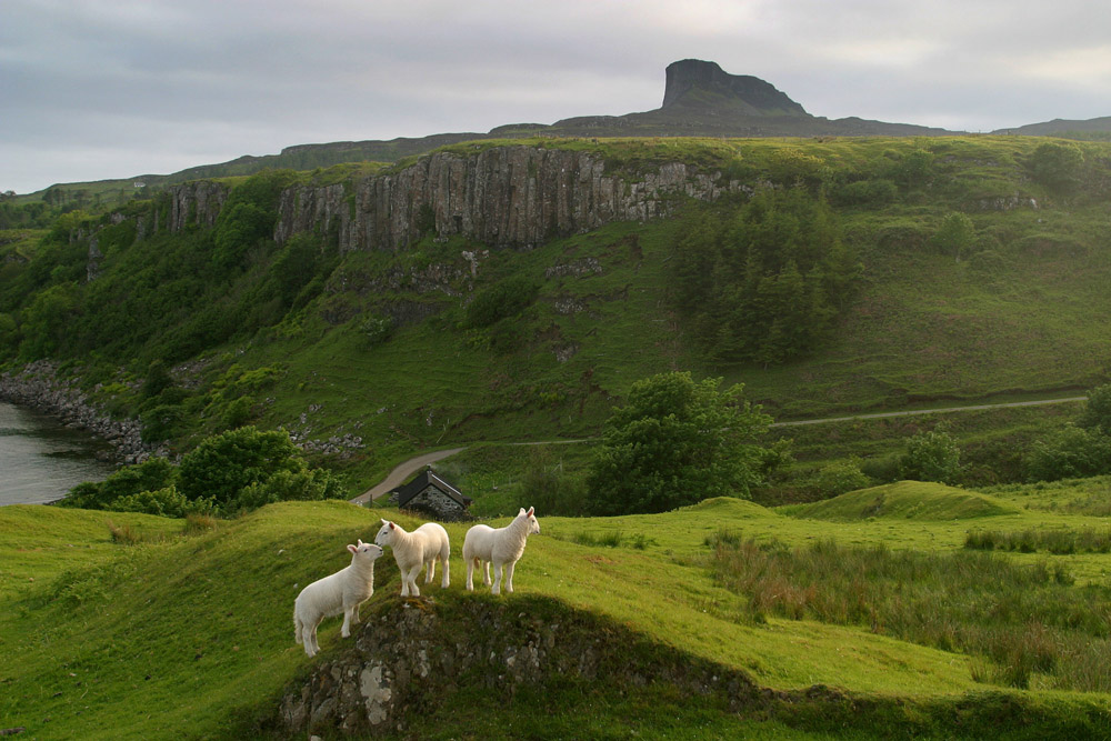 United Kingdom - Scotland - Eigg