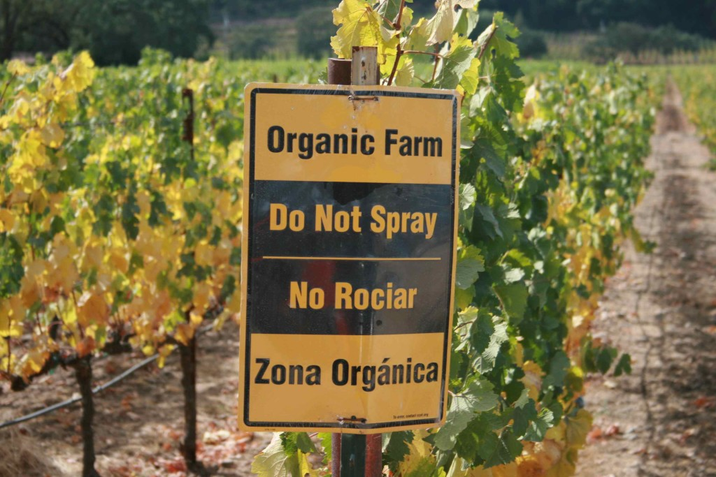 Do Not Spray!