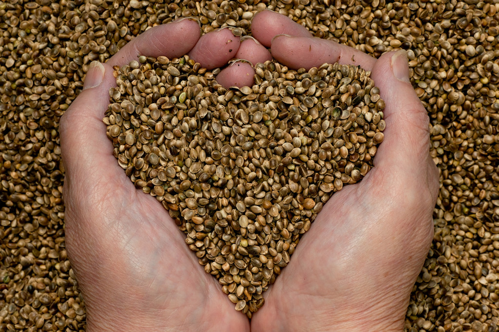 Hemp seed provides omega-3 and omega-6 essential fatty acids.