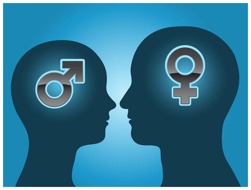 What are the differences in males and females? Image: ©Adrian Niederhà | Shutterstock
