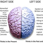 Left Brain, Right Brain: Facts and Fantasies