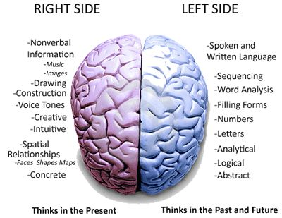 Left Brain, Right Brain: Facts and Fantasies - imaginate